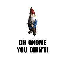Gnome You Didnt Photographic Print