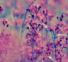Endless Beauty On the Meadow by LenkaOBS