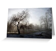 Willow in the Mist Greeting Card