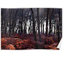 Autumn Morning - Bucklebury Poster