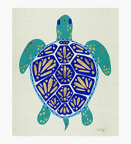Sea Turtle – Navy & Gold Photographic Print