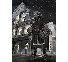 Neapolitan mastiff gladiator Photographic Print