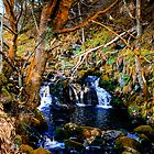 Wicklow Waters by Chris L Smith