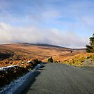 Wicklow Mountains by Chris L Smith