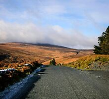 Mountains of Wicklow by Chris L Smith