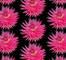 Pink Dahlia by Artberry