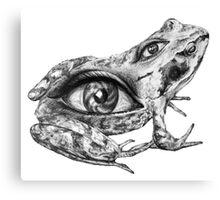 Eye-Back frog Canvas Print
