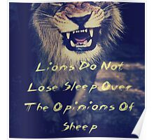 Lions Do Not Lose Sleep Over The Opinions Of Sheep Poster