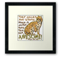 Babou is Awesome Framed Print