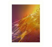 Sun Kissed Dahlia Art Print