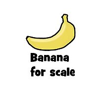 Banana for scale  Photographic Print