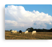 On A Summer Afternoon In The Country Canvas Print