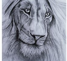 lion eyes by atouchofcanvas