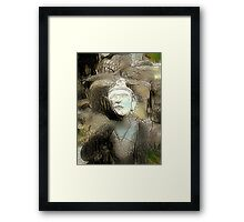 Buddha Asks Why 3 Framed Print