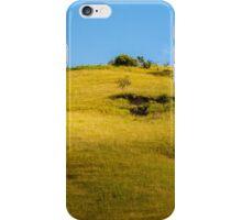XP iPhone Case/Skin