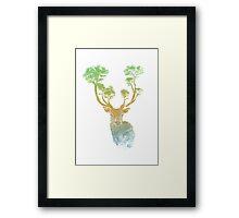 Summer Stag Framed Print