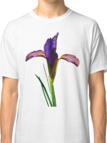 Isolated Eye of the Tiger Dutch Iris Portrait Classic T-Shirt