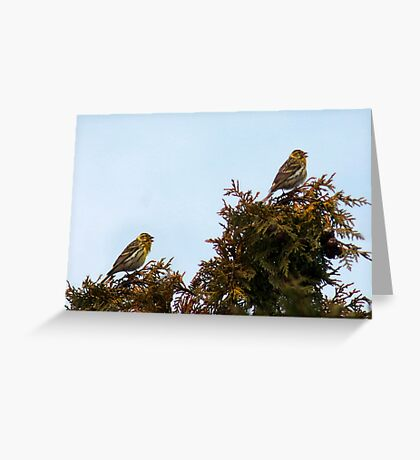 Competiton in song Greeting Card
