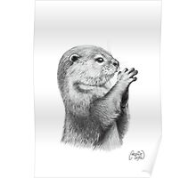 Otter Pencil Sketch Poster