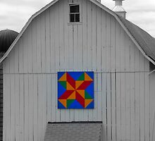 Barn Beauty by Tania Richley