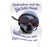 Chihuahua and the Bike Safety Message --New and Improved Tee Poster