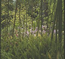 Greenery by laurafay