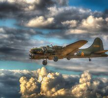 Sally B on Finals by Nigel Bangert