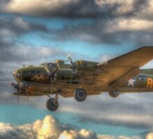 Sally B on Finals Sticker