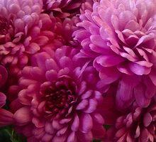 Autumn Blooms by susangabrielart