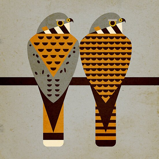Kestrels by Scott Partridge