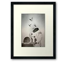 Doves Framed Print
