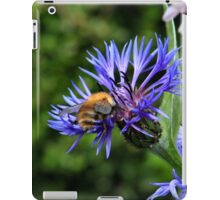 Attracted to cornflower iPad Case/Skin