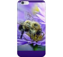 Bumble Bee - Fall Aster iPhone Case/Skin