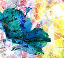Summertime Rolls by HyperLyght