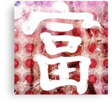 Rich Kanji Canvas Print