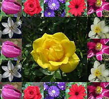 Golden Jewel Rose Collage by BlueMoonRose