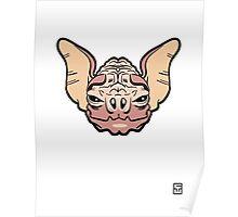 Wrinkle-Faced Bat Poster