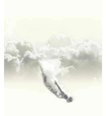 Sky diver Sticker