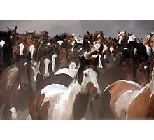 Horses On The Move Photographic Print