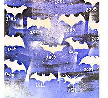 History of a Bat   by mike lusk