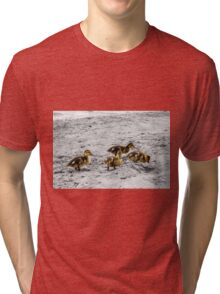 Ducklings Tri-blend T-Shirt