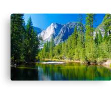 Yosemite National Park USA Canvas Print