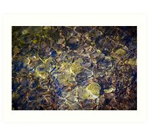 Water shining in the pond Art Print