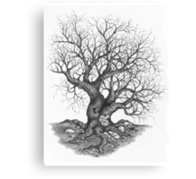 Barren Canvas Print