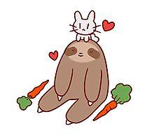 Sloth Loves Bunny Photographic Print