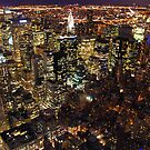 NYC at Night by KerryPurnell