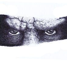 Eyes by Tedd Vallance