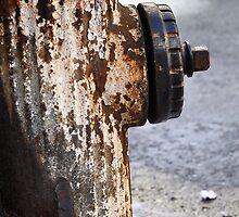 Fire hydrant - West 86th Street by Howard Freeman