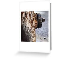 Fire hydrant - West 86th Street Greeting Card