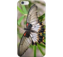 Great Mormon iPhone Case/Skin